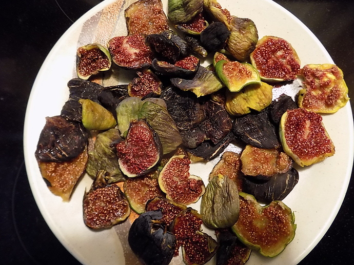 dried%20figs%20just%20right%20water%20content%20001